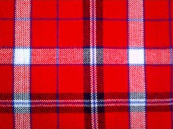 red_black_blue_white_check_picnic_blanket