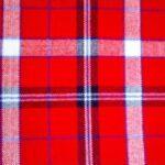 red_black_blue_white_check_picnic_blanket_2