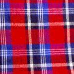 red_blue_white_check_picnic_blanket_2