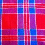 red_blue_white_check_picnic_blanket_mbur02