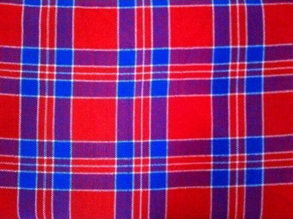 red_blue_white_check_picnic_blanket_mbur02_2