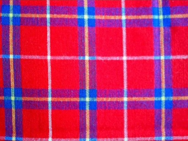 red_blue_white_yellow_picnic_blanket_2