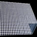 blue_check_lined_picnic_blanket_folded