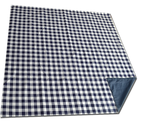 blue_check_lined_picnic_blanket_folded