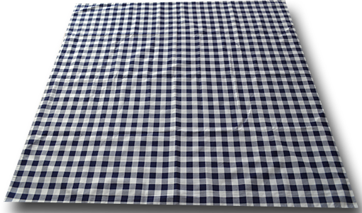 blue_check_lined_picnic_blanket_open