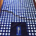 corporate_picnic_blanket_just_property