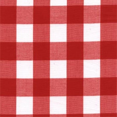 red_check_picnic_blanket